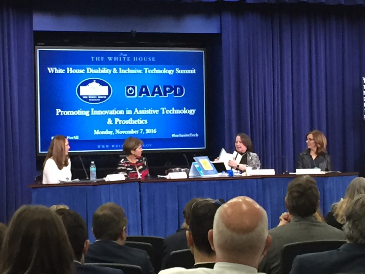 Dr. Therese Willkomm Presents at White House Summit